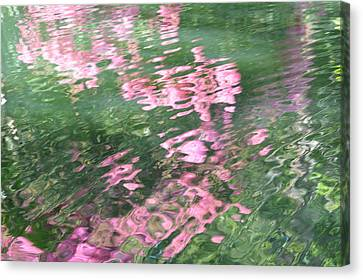 Rosey Ripples Canvas Print