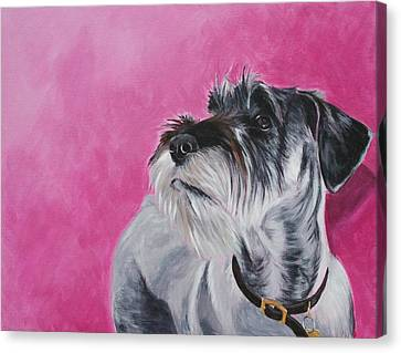 Standard Schnauzer Canvas Print - Rosie by Wendy Whiteside