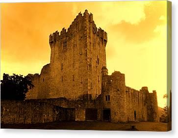 Ross Castle Canvas Print by Aidan Moran
