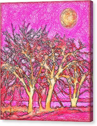 Canvas Print featuring the digital art Rosy Hued Trees - Boulder County Colorado by Joel Bruce Wallach