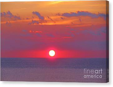 Rosy Sunrise Canvas Print