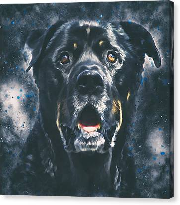 Rottweiler Portrait Canvas Print by Wolf Shadow  Photography