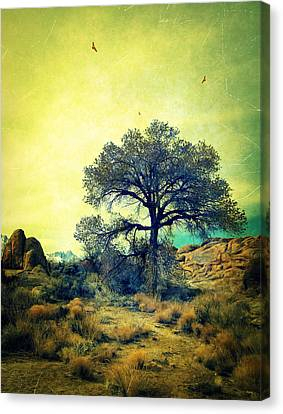 Canvas Print featuring the photograph Rough Terrain by Glenn McCarthy Art and Photography