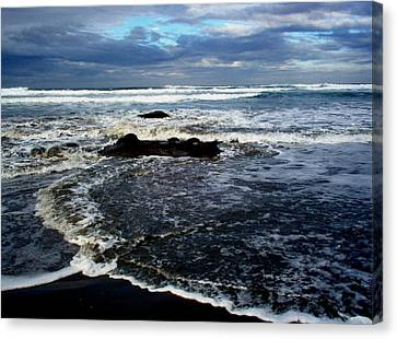 Rough Waters Canvas Print by Trisha Allard