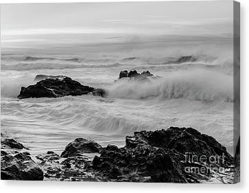 Rough Waves In Black And White Canvas Print by Masako Metz