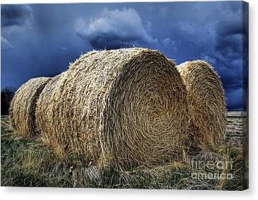 Canvas Print featuring the photograph Round Bales by Brad Allen Fine Art