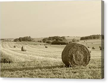 Canvas Print featuring the photograph Round Bales by John Hix
