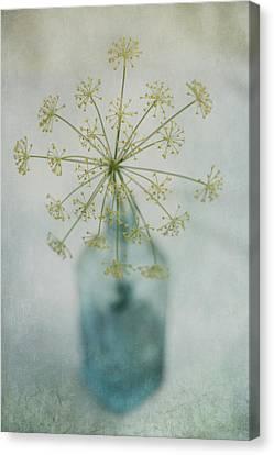 Round Dance Canvas Print by Priska Wettstein