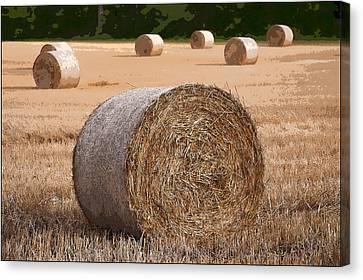 Round Hay Bales In A Swiss Field Canvas Print