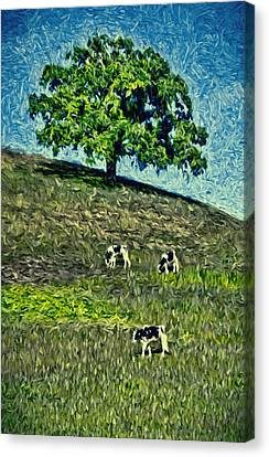 Round Hill Tree Canvas Print by John K Woodruff