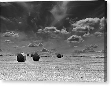 Round Straw Bales Landscape Canvas Print by John Williams