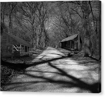 Route De La Louisiane Canvas Print by Cecil Fuselier