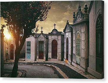 Canvas Print featuring the photograph Row Of Crypts by Carlos Caetano