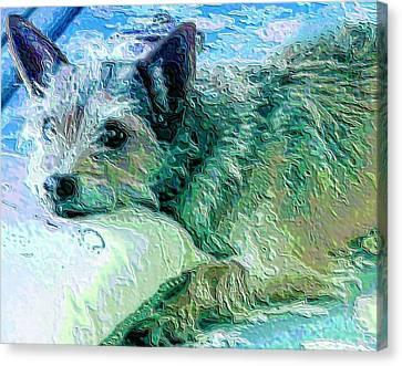Roxy Canvas Print by Vickie G Buccini