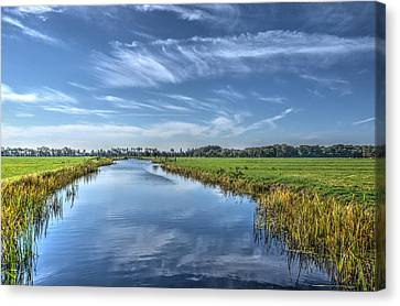 Royal Canal And Grasslands Canvas Print