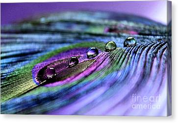 Soul Reflections Canvas Print