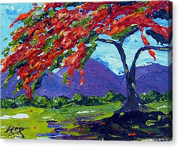 Royal Poinciana Palette Oil Painting Canvas Print by Maria Soto Robbins