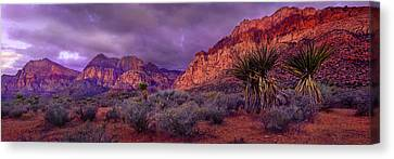 Red Rock Canyon Canvas Print by Mikes Nature