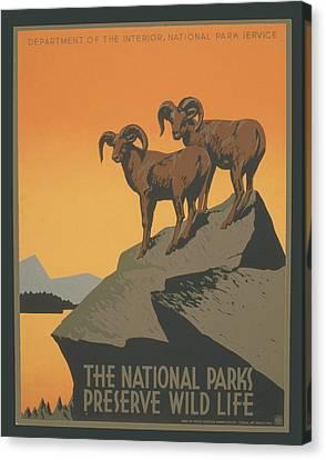 Rreserve Wildlife Canvas Print