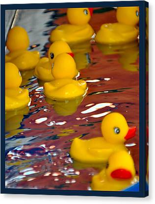 Canvas Print featuring the photograph Rubber Duckies by Laura DAddona