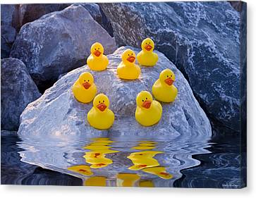 Rubber Ducks In The Wild Canvas Print by Shelly Stallings