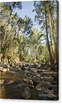Canvas Print featuring the photograph Rubicon River by Linda Lees