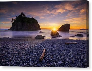 Canvas Print featuring the photograph Ruby Beach Dreaming by Dan Mihai