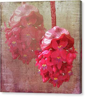 Ruby Colored Orchid Canvas Print By Rosalie Scanlon