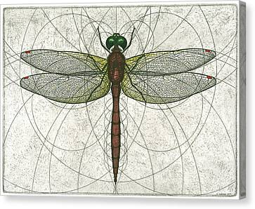 Ruby Meadowhawk Dragonfly Canvas Print by Charles Harden
