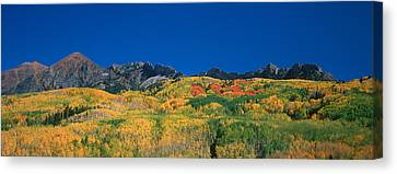 Ruby Range Color Of Fall Canvas Print by Dusty Demerson