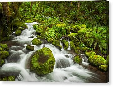 Beautiful Creek Canvas Print - Ruckel Creek by Thorsten Scheuermann