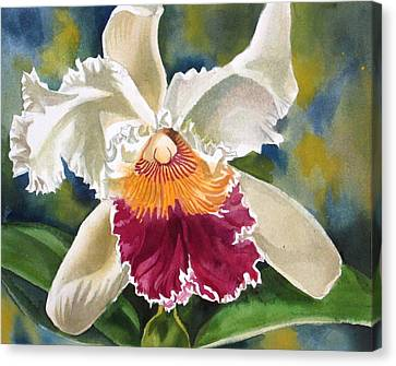 Ruffled Beauty Canvas Print by Alfred Ng