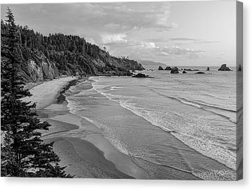 Rugged Beauty Canvas Print by Don Schwartz