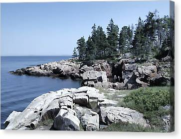 Rocky Maine Coast Canvas Print - Rugged Maine Coastline by Daniel Hagerman
