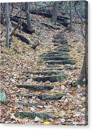 Canvas Print featuring the photograph Rugged Path by Alan Raasch