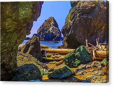 Sonoma Coast Canvas Print - Rugged Sonoma Coast by Garry Gay
