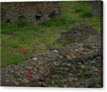 Canvas Print featuring the photograph Ruins In Rome by Manuela Constantin