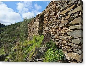 Ruins Of A Schist Cottage In Alentejo Canvas Print by Angelo DeVal