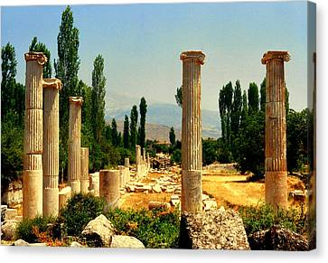 Ruins Of  Aphrodisias Canvas Print