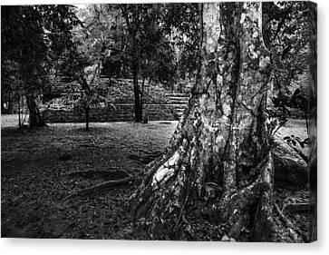 Canvas Print featuring the photograph Ruins Of Tikal by Yuri Santin
