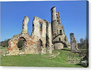 Canvas Print featuring the photograph Ruins Of Zviretice Castle by Michal Boubin
