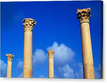 Ruins Roman Columns At Timgad Canvas Print by Roman School