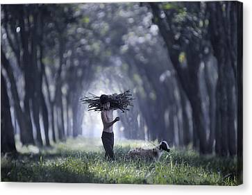 Rumpin Canvas Print by Andre Arment