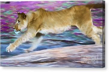 Run Canvas Print by Judy Kay
