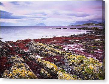 Runde Island Canvas Print by Martin Zorn
