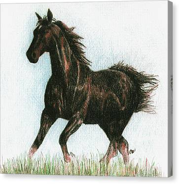 Running Horses Canvas Print - Running Free by Arline Wagner