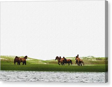 Canvas Print - Running Horses In The Marsh 2 by Dan Friend