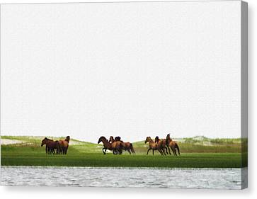 Canvas Print - Running Horses In The Marsh 3 by Dan Friend
