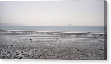 Running On The Beach Canvas Print