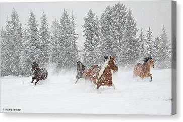 Running Through The Storm Canvas Print
